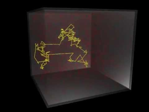3D Visualization of Random Walk During Particle Diffusion
