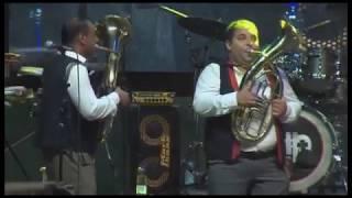 Bojan Ristić Brass Band, Guča 2019 - Romaneros
