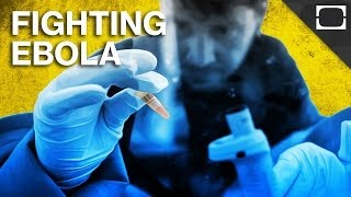 Ebola Virus Disease - U.S. Aid in South Africa