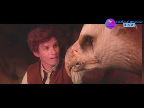 Fantastic Beast And Where To Find Them Adventure movie[HD] in Hindi