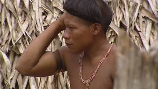 KORUBO: morir matando (parte 2)