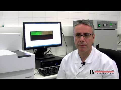 Array CGH: Descubriendo los milagros del embrión. Comprehensive Chromosome Screening (CCS)