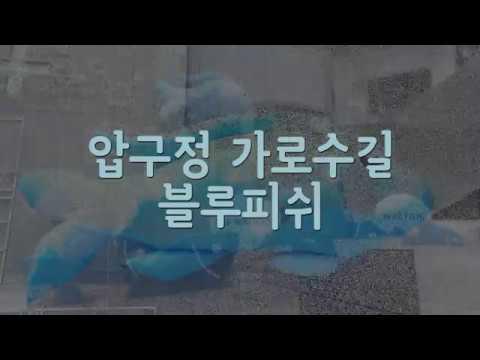 강남셀카봉 NEWS - 블루피쉬