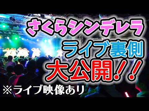 , title : '【アイドルの裏側】さくらシンデレラデビュー5周年記念ワンマンライブの裏側に密着!'