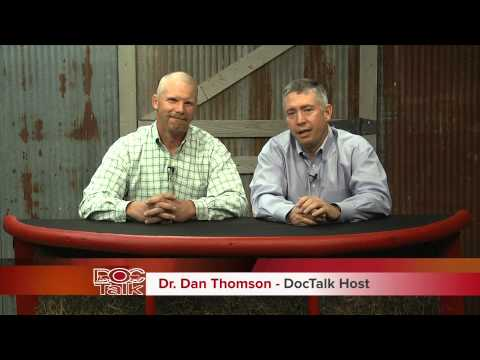 DocTalk: Feeding cattle through the winter
