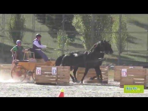 Campeonato Navarro de Enganches 1