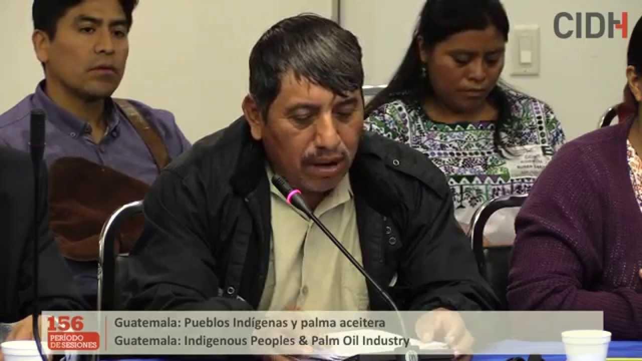 Situación de derechos humanos de los pueblos indígenas en el contexto de las actividades de agroindustrias de palma aceitera en Guatemala