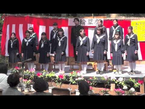 ハナミズキ (混声三部) 安行中学校合唱部
