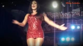 Aniceto Molina   Popurri De Cumbias HD