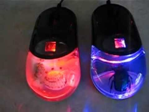 Fun unique computer mouse with sea shells, other sea life; insects too! Abbutterflies.com