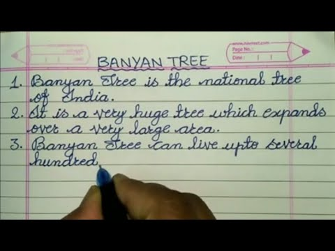 Write 5 Sentences about Banyan Tree ✍@Sunflower