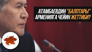 """Атамбаевдин """"балптары"""" Арменияга чейин жеттиби?"""