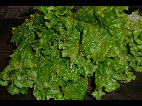 How To Juice Green Leaf Lettuce Recipe