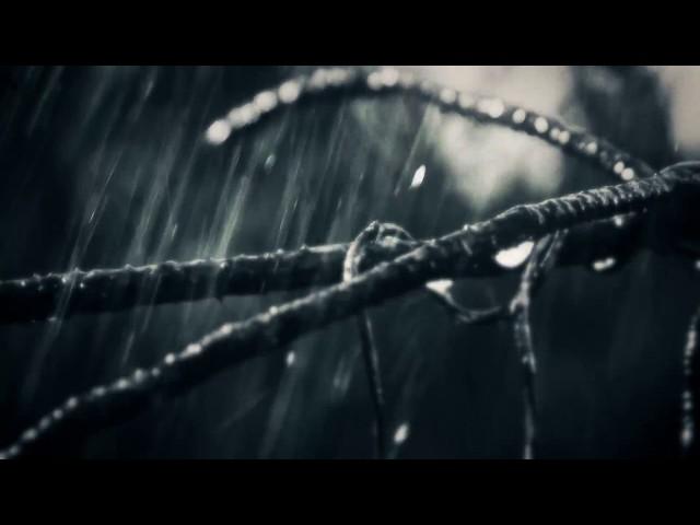 13th ANNIVERSARY -Xlll GALLOWS- Trailer