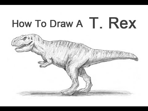 Spinosaurus vs t Rex Drawing How to Draw a T-rex Head Step