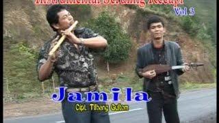 Posther Sihotang Ft. Roy Sihotang - Jamila (Official Instrumental Video)