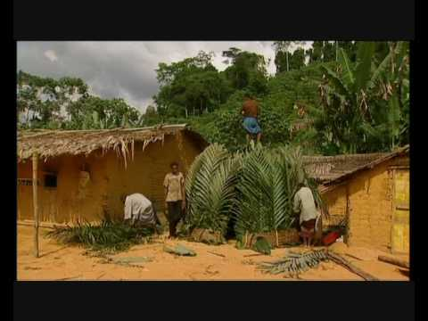 Doc - Tribe: The Babongo (2005)