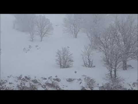 בוקר באתר החרמון (28.2). צילום: ירון בר ורפאל נוה