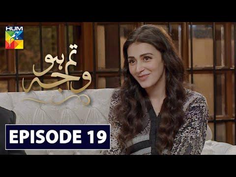 Tum Ho Wajah Episode 19 | English Subtitles | HUM TV Drama 11 September 2020