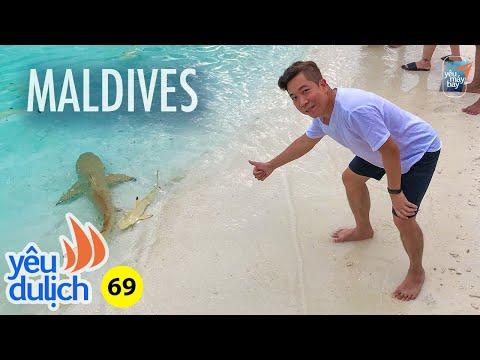 YDL #69: Chơi với cá mập ở Maldives | Yêu Máy Bay - Thời lượng: 23:18.