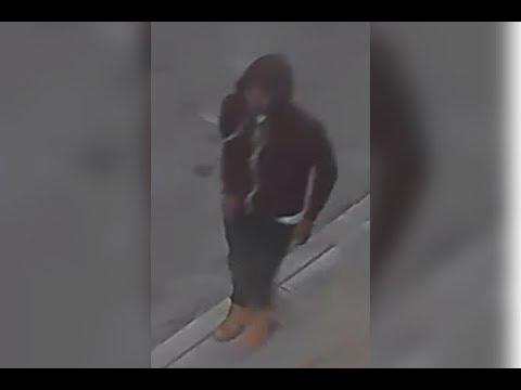 Video Homicide 5800 Hoffman St DC 16 12 064224 download in MP3, 3GP, MP4, WEBM, AVI, FLV January 2017