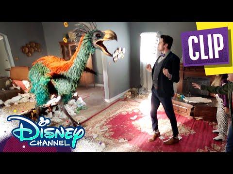 Bird-quake! | Gabby Duran & the Unsittables | Disney Channel