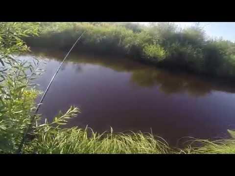 поплавочная рыбалка на малых реках видео