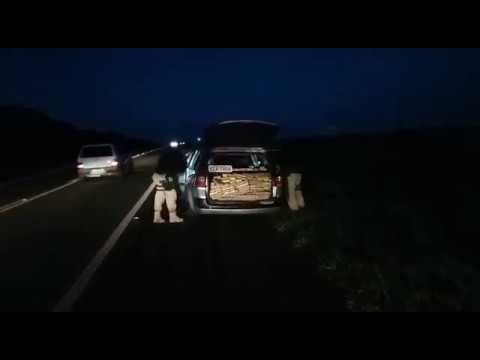Céu Azul: Polícia Rodoviária Federal apreende drogas na BR 277