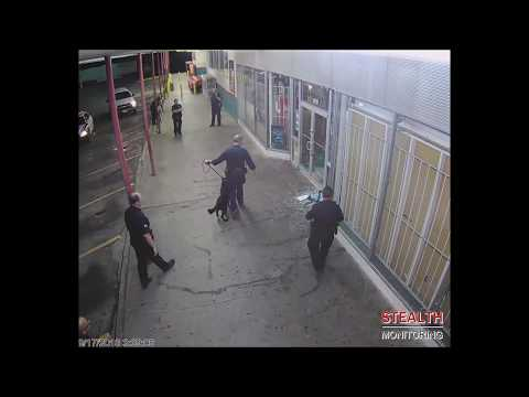 Thief Smashes Window, Caught by Police Dog