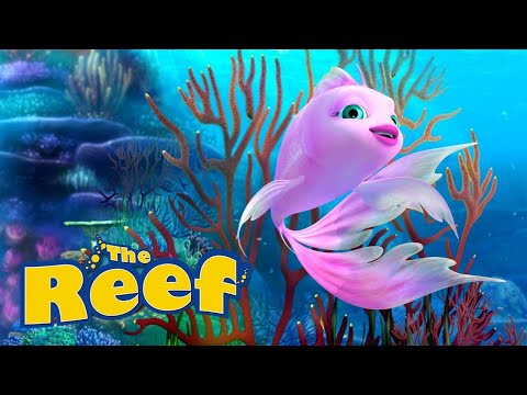 THE REEF - You Don't Own Me...