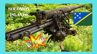 WW2 Japanese guns in the SOLOMON ISLANDS: Here are two, rarely seen, Japanese guns from the second world war, installed in the forests of the island of ...