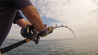 Exclusive footage of the unbelievable shark catch taken aboard a 17-foot boat fishing just off the Isle of Wight, in the UK. Wayne Comben has set the bar incredibly high by having his small boat record no less than 4 big Thresher sharks in 4 consecutive trips. All were released successfully. Graeme even managed a 130 pounder himself, and while he has previously taken both Atlantic Thresher and Pacific Bigeye Threshers he jumped at the chance to film Wayne's 4th attempt. Check out the film and try to think about two of Wayne's catches. Solo fishing miles out to sea on his own and battling a Thresher plus filming at the same time. Totally Awesome shark fishing !!!► Follow Wayne's Blog here: http://threshertales.co.uk/► Download our Free Digital Fishing Magazine: http://www.awesomeangler.co.uk► Become a Patron for monthly Q&A and Behind the Scenes: https://www.patreon.com/totallyawesomefishing?ty=h► Check out the Salt Life YouTube Channel: https://www.youtube.com/c/saltlife▬▬▬▬▬▬▬ FOLLOW US ▬▬▬▬▬▬▬• Instagram → https://www.instagram.com/tafishingofficial/• Facebook → https://www.facebook.com/totallyawesomefishing• Snapchat → tafishing• Twitter → https://twitter.com/tafishing• Our website & DVDS → http://www.totallyawesomefishing.com• Google+ → https://plus.google.com/+TAFishing/posts▬▬▬▬▬▬▬ FILMING GEAR WE USE ▬▬▬▬▬▬▬Main Camera - SonySecondary Camera - http://amzn.to/2jXo3C0DSLR Camera - http://amzn.to/2bXaO1YLaptop Editing Computer - http://amzn.to/2g4LMd4GoPro Chest Mount - http://amzn.to/2cjvTBLGoPro Head Mount - http://amzn.to/2bXdwo4Drone - http://amzn.to/2bXd0GIMike's Camera Microphone - http://amzn.to/2bThNbbThese are Amazon associate links ▬▬▬▬▬▬▬ TAF CLOTHING & MERCH ▬▬▬▬▬▬▬UK Clothing Store → http://totallyawesomefishing.spreadshirt.co.uk/Europe Clothing    → http://totallyawesomefishing-eu.spreadshirt.net/US Clothing Store → http://totallyawesomefishing.spreadshirt.com/▬▬▬▬▬▬▬ FISHING PLAYLISTS ▬▬▬▬▬▬▬SEA FISHING: https://www.youtube.com/playlist?list=PLlJD