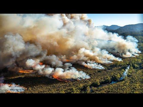 Tasmanien: Feuerwehrleute kämpfen gegen Waldbrände