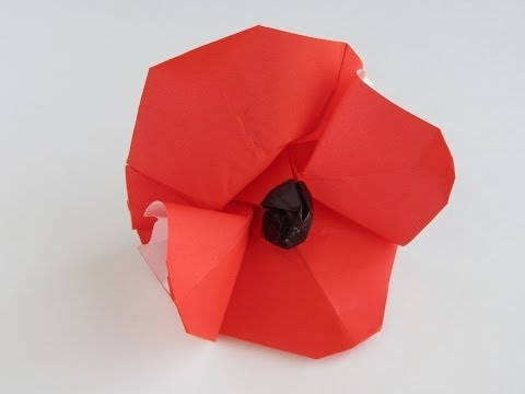 Flower Tutorial - 008 -- Poppy