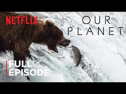 Our Planet | Fresh Water | FULL EPISODE | Netflix