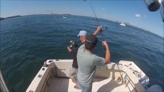Boston Harbor Striped Bass fishing at it's finest!