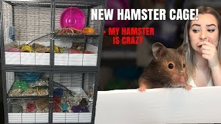 SETTING UP MY NEW HAMSTER CAGES! + my hamster is crazy by Emma Lynne Sampson
