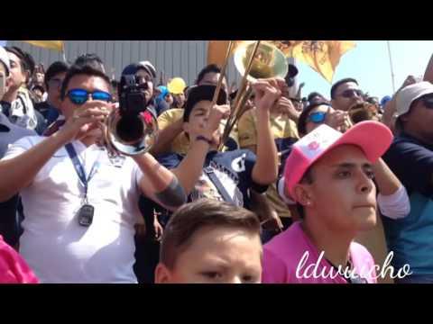 Pumas vs Tigres - La Banda Del Pebetero - La Rebel - Pumas