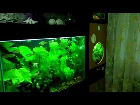 Стойка для аквариума - смотреть онлайн на UmoraTV.ru