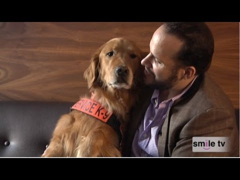 golden retreiver - Captain Luis Carlos Montalvan returned from war with a severe case of Post-Traumatic Stress Disorder. But thanks to a Service Dog named Tuesday, Luis has tur...