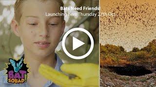 Bat Squad - Ep.3 Bats Need Friends