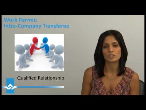 Requirements for Intra Company Transferee Work Permit