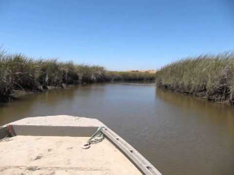 Take a Tour of Natural Suisun Marsh