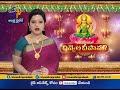 Govt Organized By Diwali Festival Celebrations across the state - Video