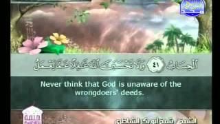 الجزء 13 الربع 8 : الشيخ شيخ أبو بكر الشاطري
