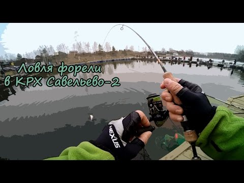платная рыбная ловля  для царская рыба во  украине