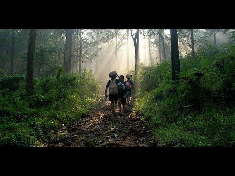 Moksha Documentary of The Pilgrimage - Mission Green Sabarimala by Pathanamthitta District Administration