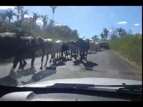 São Gonçalo do Piauí