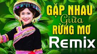 gap-nhau-giua-rung-mo-tinh-ca-tay-bac-nhac-do-khang-chien-remix-nhac-song-cach-mang-tay-bac-dj