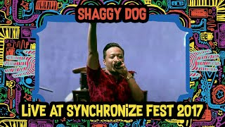 Shaggy Dog live at SynchronizeFest - 7 Oktober 2017